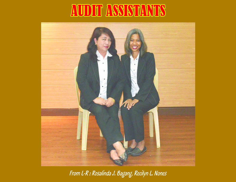 Audit Assistants
